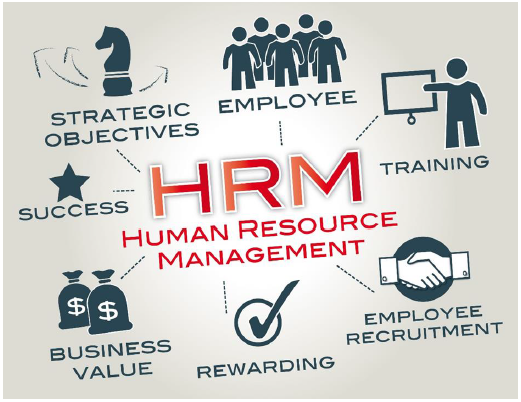 Seeking top HR training courses in Dubai